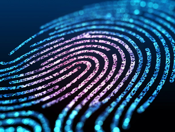 Firma electrónica biométrica
